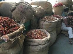 new-delhi-spice-market-chiles